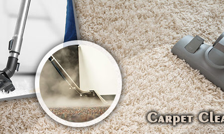 Benefits to Work with Professional Carpet Cleaner Geelong
