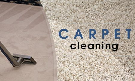 Should I Pay Off Professional Carpet Cleaners to Remove Pet Hair?